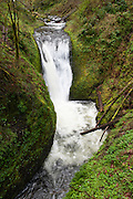Middle Oneonta Falls (~50 foot plunge), 1.8 miles round trip walk, Oneonta Gorge, in Columbia River Gorge National Scenic Area, Oregon, USA.