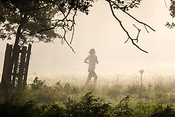 Licensed to London News Pictures. 06/09/2021. London, UK. A runner enjoys a warm misty start to the day in Richmond Park, south-west London as weather forecaster predict a mini-heatwave for September this week with temperatures hitting over 29c tomorrow. Photo credit: Alex Lentati/LNP
