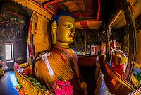 Shakyamuni Buddha statue (second largest in Ladakh), Shey Palace, Leh Valley, Ladakh, Jammu and Kashmir State, India.