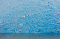 Blue iceberg detail from South Sawyer Glacier in Tracy Arm - Ford Terror Wilderness, Alaska.