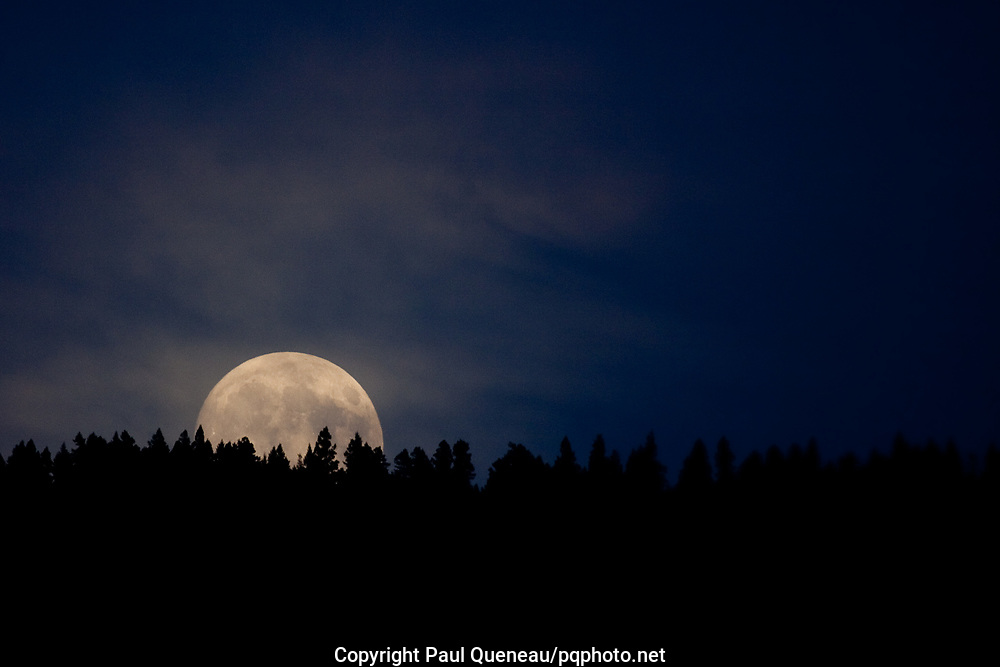 A fat moon rises over University Mountain near Missoula on an August evening.