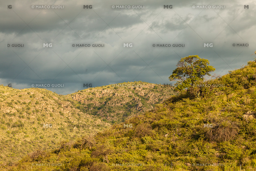 MONTE Y SIERRAS, SAN MARCOS SIERRAS, PROVINCIA DE CORDOBA, ARGENTINA (PHOTO © MARCO GUOLI - ALL RIGHTS RESERVED)