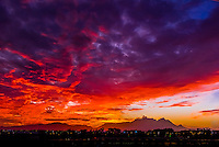 A blazing sunset, Table Mountain and Lion's Head Mountain, Cape Town, South Africa.