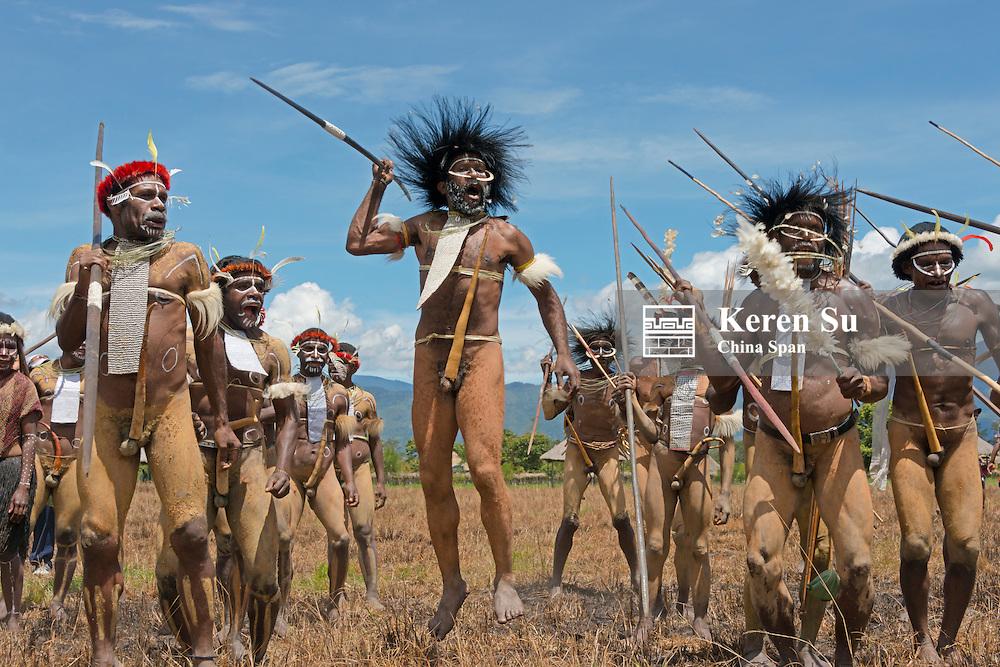 Dani man wearing kotekas (penis gourd) and spear at Baliem Valley Festival, Wamena, Papua, Indonesia