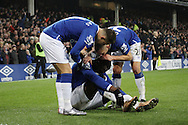 an injured Romelu Lukaku of Everton celebrates with his teammates after scoring his teams 2nd goal. Capital one cup semi final 1st leg match, Everton v Manchester city at Goodison Park in Liverpool on Wednesday 6th January 2016.<br /> pic by Chris Stading, Andrew Orchard sports photography.