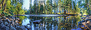 Art image panorama of reflections on the Merced River in yosemite Valley, Yosemite National Park, CA