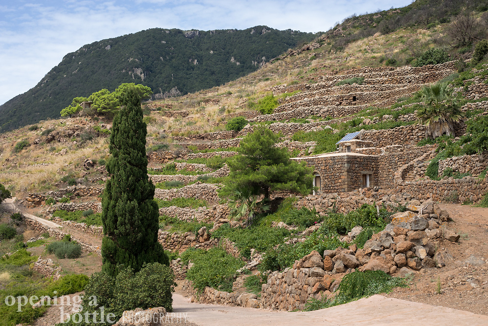 Horizontal photo of the Pantelleria landscape near Montagna Grande.