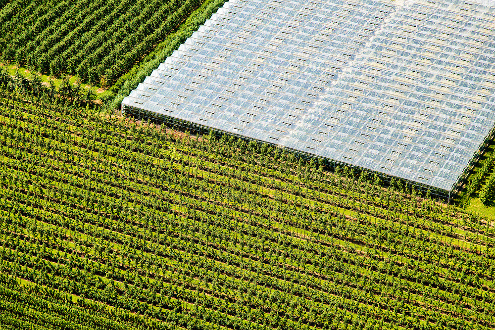 Nederland, Utrecht, Gemeente Utrecht, 26-06-2014; Houten, Boomkwekerijen en kassen.<br /> luchtfoto (toeslag op standard tarieven);<br /> aerial photo (additional fee required);<br /> copyright foto/photo Siebe Swart