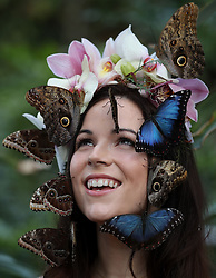 Model Jessie May Smart with a Blue Morpho and Giant Owl butterflies during a photocall for RHS Garden Wisley's Butterflies in the Glasshouse exhibition in Woking, Surrey.