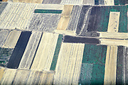 Aerial View of cultivated farmland Photographed in Israel