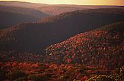 PA landscapes, Endless Mountains, Autumn, NE PA, near World's End State Park, Spring, Pennsylvania
