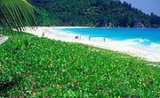 Sandy beach and blue sea, Anse Intendance beach, Mahe Seychelles