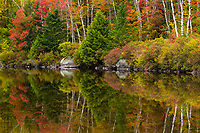 Peak autumn color graces Kettle Pond, Groton State Forest, Vermont