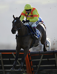 Race Winner Cresswell Breeze ridden by Aiden Coleman jumps the last in the Aspen Waite R & D Introducers Mares' Handicap Hurdle (Class 5) (4YO plus) - Photo mandatory by-line: Harry Trump/JMP - Mobile: 07966 386802 - 17/02/15 - SPORT - Equestrian - Horse Racing - Taunton Racecourse, Somerset, England.