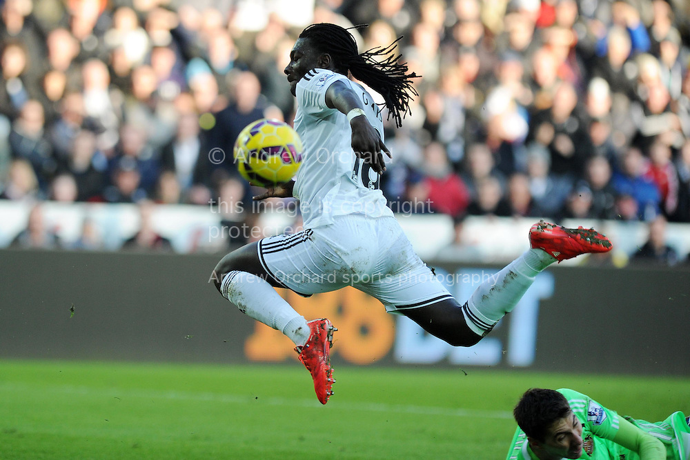 Bafetimbi Gomis of Swansea city in action.  Barclays premier league match, Swansea city v Sunderland at the Liberty stadium in Swansea, South Wales on Saturday 7th Feb 2015.<br /> pic by Andrew Orchard, Andrew Orchard sports photography.