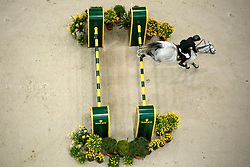 Diniz Luciana (POR) - Winningmood<br /> Rolex FEI World Cup Final - Geneve 2010<br /> © Dirk Caremans