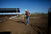 Tony Azevedo closes the gates after the cows went in to be milked on the family dairy farm property in Stevinson, Calif., on Sunday, March 23, 2014.  Tony plans to get out of the dairy business and focus on his event business, The Double T, which holds western themed weddings and parties.