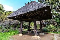 Japanese thatched granary- a storehouse for rice or grain  are usually built above ground to keep rats, mice and pests away from the stored goods.  Thatching in Japan has long been used for the roofs of farm houses, traditional homes, temples and shrines.