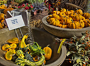 These gourds were on display in a flower shop