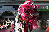 Lunar New Year of the Pig celebrations in New York's Chinatown