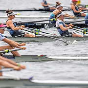 Georgia Nugent O Leary  & Ashlee Rowe  Race the premier double sculls<br /> <br /> Racing the Christmas Regatta on Lake Karapiro, Cambridge, New Zealand. Sunday 15 December 2019  © Copyright photo Steve McArthur / www.photosport.nz
