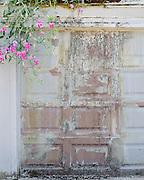 Weathered garage door with peeling paint and pink flowers in Portland, Oregon.