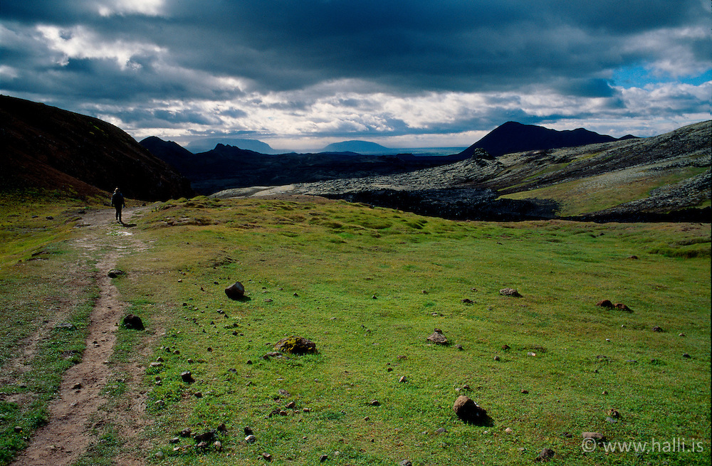 Samspil gróðurs og fjalla við Kröflu / Balance between the earth and the mountains in the geothermal area, Krafla in the north