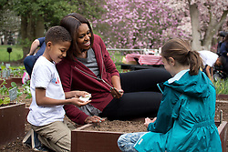 First Lady Michelle Obama joins students for the spring garden planting in the White House Kitchen Garden, April 15, 2015. (Official White House Photo by Chuck Kennedy)<br /> <br /> This official White House photograph is being made available only for publication by news organizations and/or for personal use printing by the subject(s) of the photograph. The photograph may not be manipulated in any way and may not be used in commercial or political materials, advertisements, emails, products, promotions that in any way suggests approval or endorsement of the President, the First Family, or the White House.