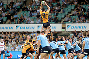 Cadeyrn Neville wins a lineout. NSW Waratahs v ACT Brumbies. 2021 Super Rugby AU Round 7 Match. Played at Sydney Cricket Ground on Friday 2 April 2021. Photo Clay Cross / photosport.nz
