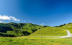THEMENBILD - Zwei Personen beim Wandern am Hahnenkamm mit dem Bergpanorama des Steinbergkogels im Hintergrund, aufgenommen am 26. Juni 2017, Kitzbühel, Österreich // Two people hike at the Hahnenkamm with the mountain panorama of the Steinbergkogel in the background at the Hahnenkamm, Kitzbühel, Austria on 2017/06/26. EXPA Pictures © 2017, PhotoCredit: EXPA/ Stefan Adelsberger