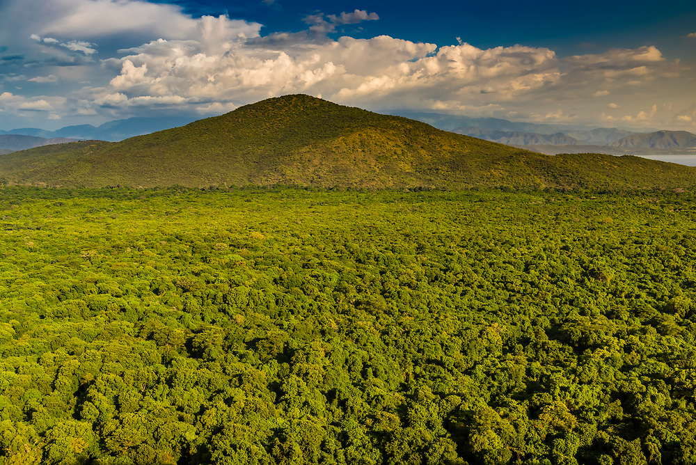 View from Haile Resort Arba Minch, Ethiopia over evergreen vegetation.