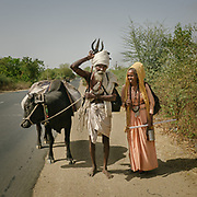 Hindu pilgrim couple circumambulating the holy Naramda river.<br /> Madhya Pradesh Province.