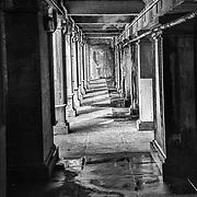 Beneath the Fredericksburg Train Station railroad bridge, the architectural arcade resembles ancient catacombs.