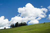 Puffy clouds above green hillside, Wallowa Valley, Oregon