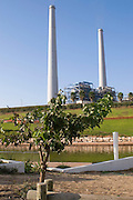 """Israel, Hadera the garden and Hadera river surrounding the """"Orot Rabin"""" coal fueled power plant"""