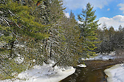 winter scenic with white pine trees along river shoreline<br /> near Calumet<br /> Quebec<br /> Canada