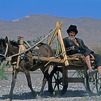 A Uygur villagers steers his horse cart down a rugged road on the edge of the Taklimakan Desert near Kashagar (Kashi) in Xinjiang Province, China.
