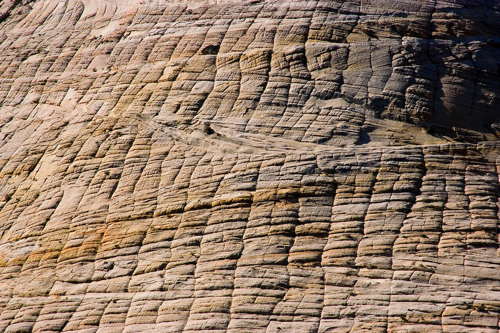 Zion National Park, Utah, UT, closeup of Checkerboard Mesa rock formation, landform, Southwest America, American Southwest, US, United States, Image ut376-17646, Photo copyright: Lee Foster, www.fostertravel.com, lee@fostertravel.com, 510-549-2202