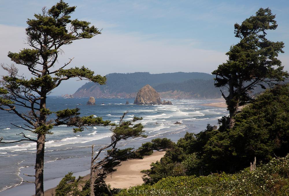 Waves along the Oregon Coast