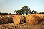 Spain, Catalonia, agricultural fields bales of straw