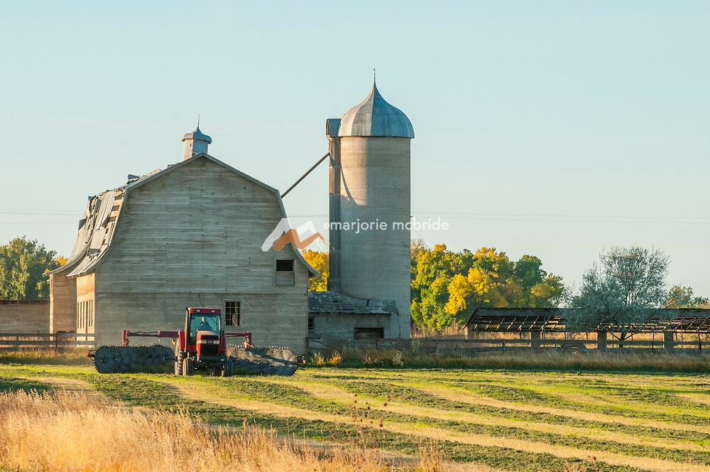 Farmer cutting hay field with beautiful old barn in background. Buhl, Idaho.