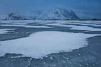 Frozen winter sea ice of Ytterpollen, near Borgvåg, Vestvågoy, Lofoten Islands, Norway