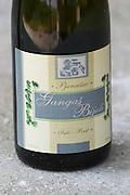 Bottle of Gangas Bijeli Pjenusac Suhi Brut white sparkling wine. Label detail. Vita@I Vitaai Vitai Gangas Winery, Citluk, near Mostar. Federation Bosne i Hercegovine. Bosnia Herzegovina, Europe.