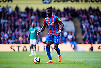 LONDON, ENGLAND - MAY 13: Wilfried Zaha (11) of Crystal Palace during the Premier League match between Crystal Palace and West Bromwich Albion at Selhurst Park on May 13, 2018 in London, England. MB Media