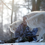 German wolf researcher Werner Freund, 79, is surrounded by Arctic wolves in an enclosure at the wolves park in Merzig in the German province of Saarland January 24, 2013. Freund established a home for wolves in 1972 and raised more than 70 animals in the last 30 years. Freund had to become a wolf among wolves to be accepted by the pack. Picture taken January 24, 2013.  REUTERS/Lisi Niesner  (GERMANY)