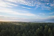 Aerial view of partly fog covered coniferous forests and moody sky of late summer, near Tīreļpurvs, Latvia Ⓒ Davis Ulands   davisulands.com