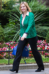 Downing Street, London, June 16th 2015. Amber Rudd, Secretary of State for Energy and Climate Change arrives at 10 Downing Street for the weekly cabinet meeting.