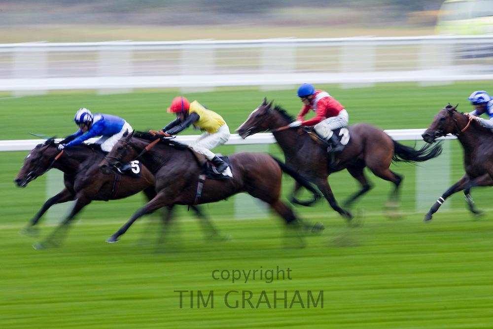 Horseracing at Ascot Racecourse, Berkshire, England, United Kingdom