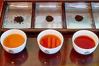 Sri Lanka, province du centre, Nuwara Eliya, dégustation du thé // Sri Lanka, Ceylon, Central Province, Nuwara Eliya, tea tasting