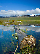 Photos from the Western part of Iceland.